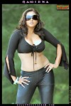 Namitha_BollywoodSargam_hot_341754