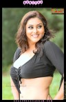 Namitha_BollywoodSargam_hot_804306
